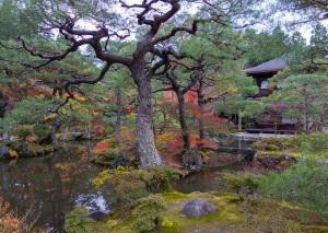 Kyoto104a