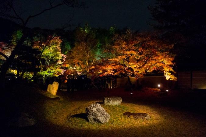 Kyoto131a
