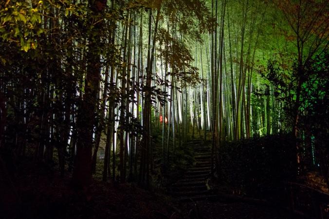 Kyoto135a