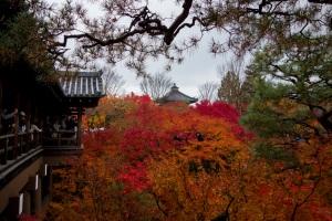Kyoto28a