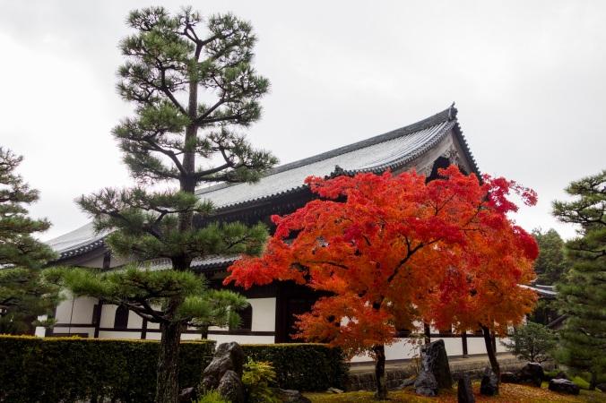 Kyoto30a