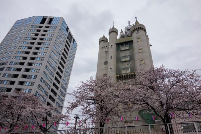 Sakura_38a